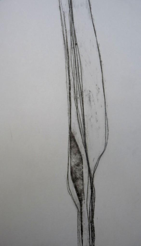 P1150135
